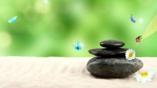 Waterfall: Nature Sounds and Relaxing Meditation Music for Zen Music Garden