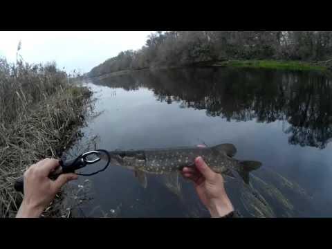 видео ловли щуки на yo zuri