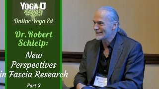 Dr. Robert Schleip Interview Part 3 | Yoga, Fascia and the Mechanics of Soft Tissue Healing