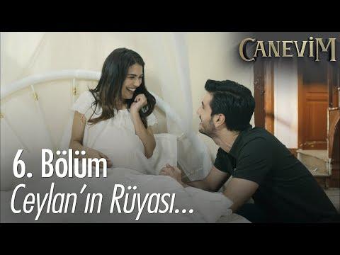 Ceylan'ın rüyası - Canevim 6. Bölüm