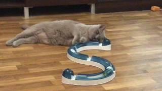 Ленивый кот Батон интерактивная игрушка для кошек catit play circuit