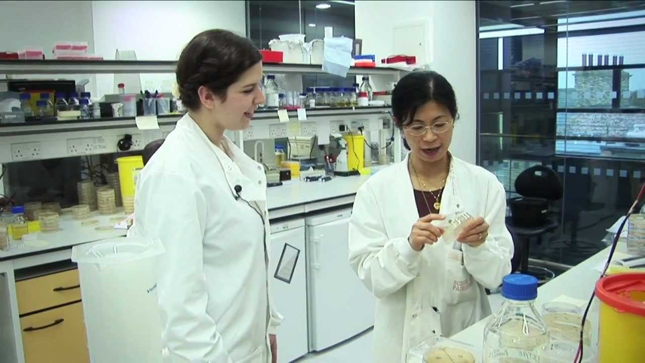 Biomedical Sciences Lab Assistant