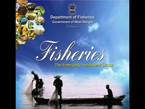 Investment In Department Of  Fisheries, Govt. West Bengal