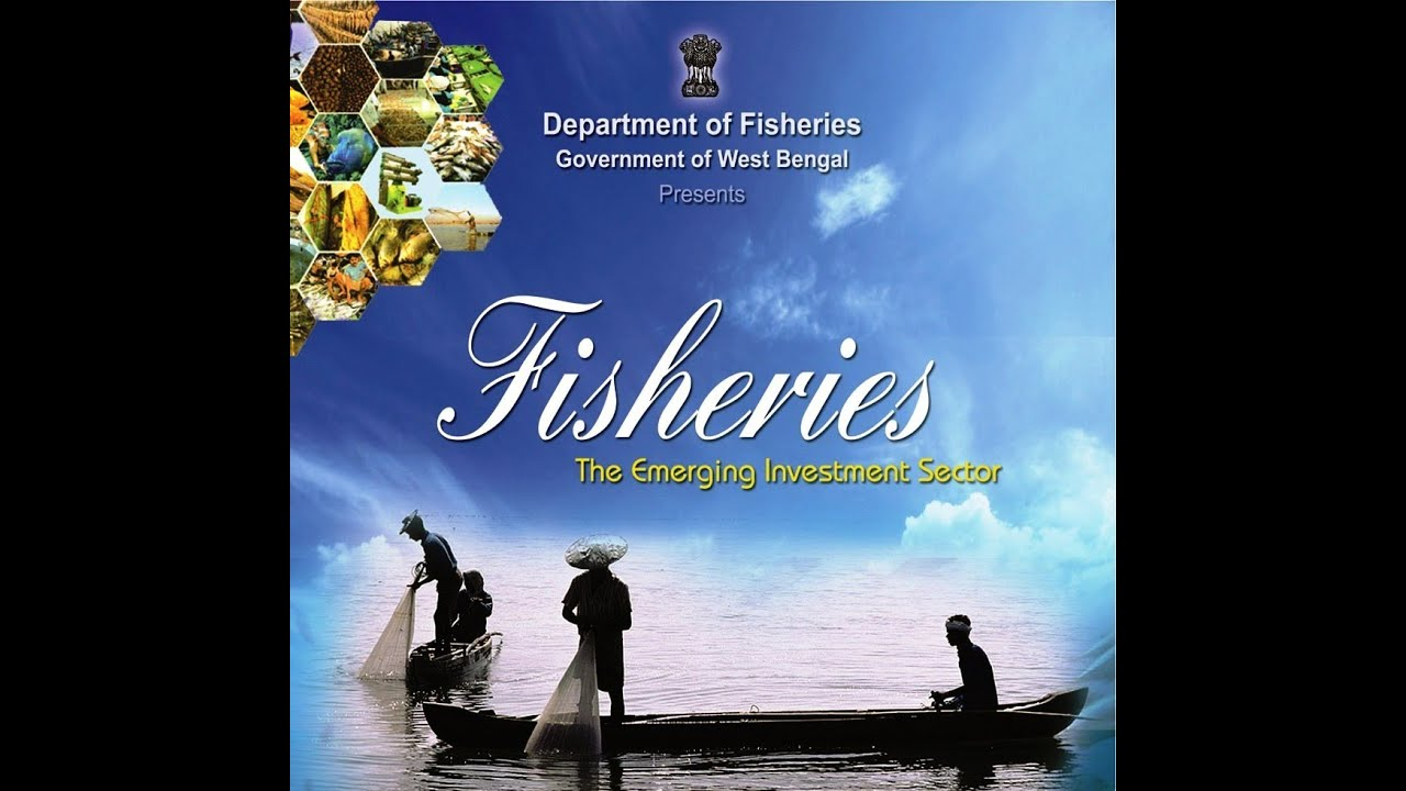 Investment in Department of Fisheries, Govt  West Bengal
