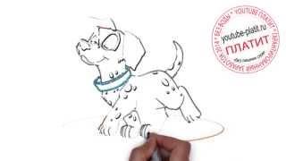 101 далматинец смотреть онлайн  Как быстро за 45 секунд карандашом нарисовать собаку далматинца
