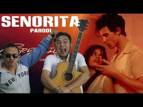 Senorita Lyrics Shawn Chord