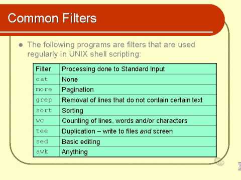 07  Unix Shell Scripting Tutorial - Text Processing (Part 1)