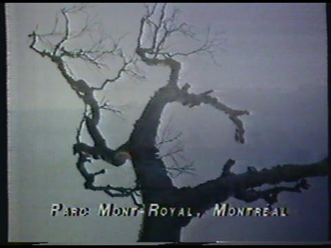 Interlude Parc du Mont-Royal