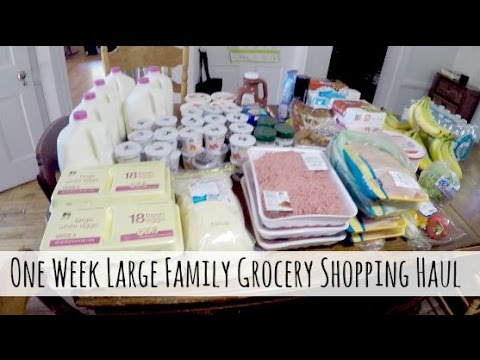 One Week Grocery Shopping Haul for Our Large Family {August 2015}
