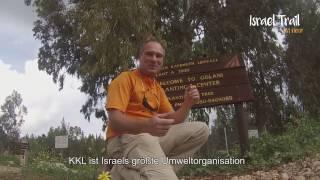 Baumpflanzen bei JNF-KKL in Israel