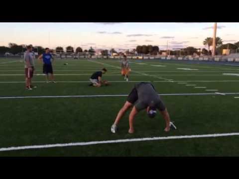Caleb Sturgis Kicking (Miami Dolphins), Pat O