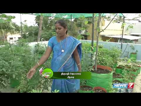 Rooftop Vegetable Gardening Guide | Poovali | News7 Tamil