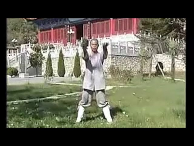 Qi Gong Bouddhiste - Yi Jin Jing