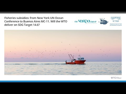 Fisheries subsidies: from New York UN Ocean Conference to Bu
