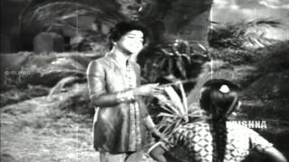 Oh Devadas Video Song || ANR Devadasu Movie ||  Akkineni Nageswara Rao, Savitri