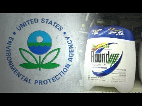 EPA to Raise Allowable Glyphosate Levels in Food Crops by 3,000%!