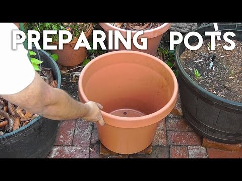 Get your Pots or Containers ready for planting!