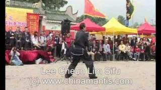 KWONGSAI MANTIS - LEE SIFU - WON HOP KUEN 2007