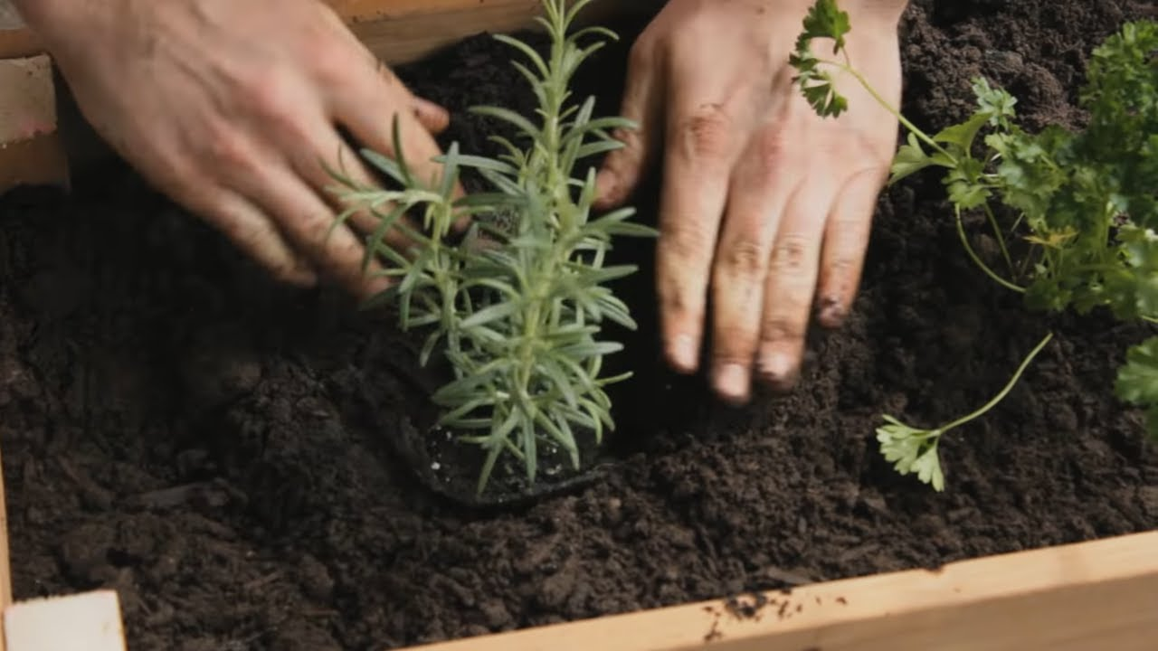 How To Build A Planter Box Youtube