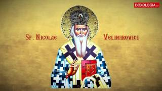 Tropar - Sfantul Nicolae Velimirovici, glas 8 (18 Martie) - Otilia SIMERIA