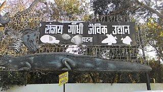 Inside Sanjay Gandhi Jaivik Udyan ( Patna Zoo), Patna, Bihar : A Paradise In Chaos
