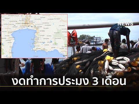 ประกาศปิดอ่าวไทย งดทำประมง 3 เดือน ฝ่าฝืนปรับ 5 พัน – 30 ล้าน    ตามข่าวเที่ยง    20 มิ.ย.62