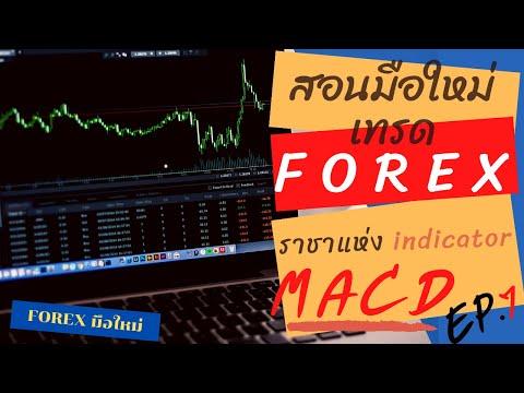 MACD ราชาแห่ง indicator (หลักสูตร 2020) MACD ใช้ยังไง   สอนมือใหม่ เทรด Forex EP 7