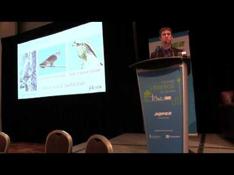10 ans de suivi environnemental post construction au Québec