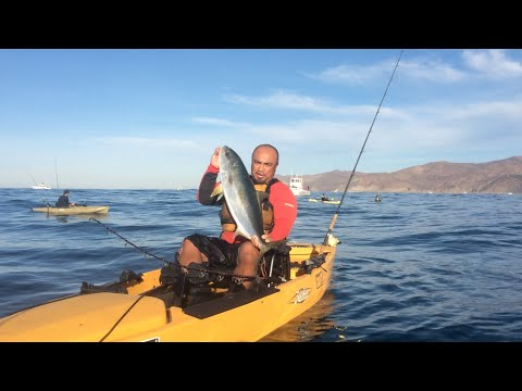 Super Seeker Fishing Rod & Release Reel Product Review • Yellowtail Fishing