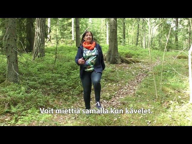 Ikäinstituutti: Metsässä tai suolla kävellen, Kunnon eväät - liike 13