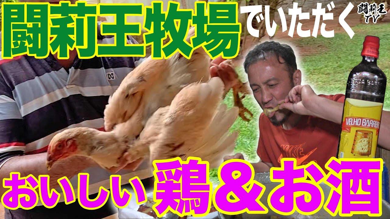 【衝撃】闘莉王、自画自賛の牧場飯がうますぎてビールが止まらない!ワイルドな鶏料理と激ウマソーセージで上機嫌「ブラジルに来ないとわからない!うますぎる!」