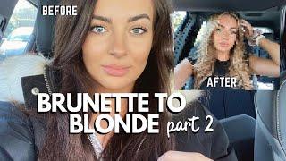 BRUNETTE TO BLONDE PART 2