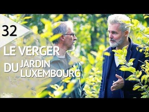 VISITE AU VERGER DU JARDIN DU LUXEMBOURG - EPISODE 32
