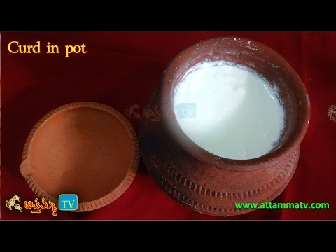 Restaurant Style Curd at Home (Yogurt) (గడ్డ పెరుగు) Recipe in Telugu