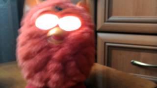 Бешеный Furby