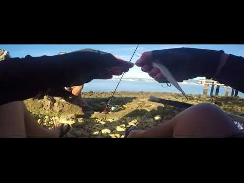 Fishing Cebu: Never Give Up