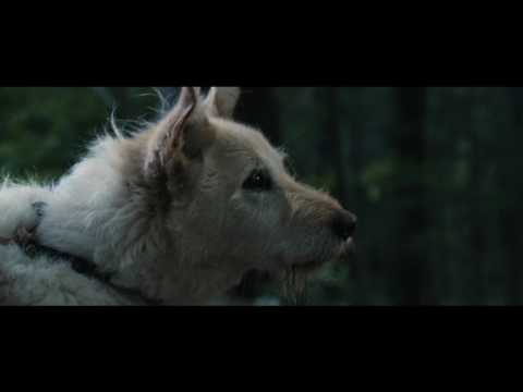 It comes at night - Bande Annonce #1
