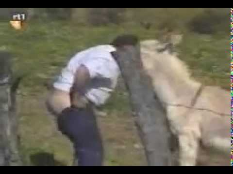 Зоо порно видео и секс с животными, скачать