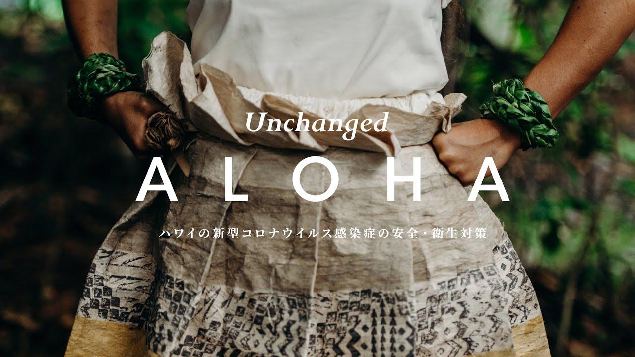 コロナ ハワイ 名古屋 ハワイ帰りでコロナウイルスの人が出ました。名古屋の男性は10日間くらいハワイ