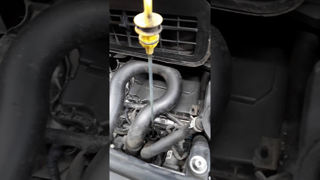 Oil Change On A Vauxhall Vivaro Renault Trafic And Nissan