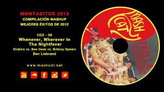 Paella 2013 09 Ben Liebrand - Shakira vs. Bee Gees vs. Britney S. - Whenever, Wherever Nightfever