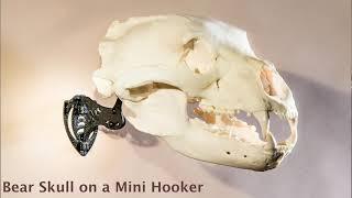 """Skull Hooker """"Mini Hooker"""" Brown video"""