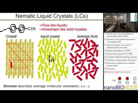 Plasmonic Nanoparticles and Nanostructures (Ivan Smalyukh)