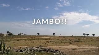 Discover Kenya-Part 1: A Travel Vlog