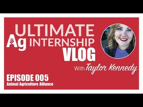 Ultimate Ag Internship 005: Animal Agriculture Alliance