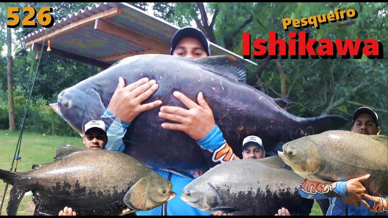 Ishikawa - O famoso lar dos tambas gigantes - Fishingtur na TV 526