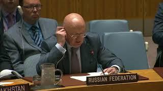 В.А.Небензя о резолюции СБ ООН об учреждении санкционного режима в отношении Мали