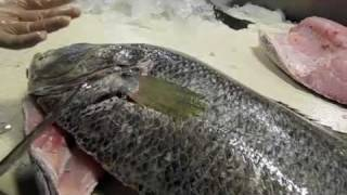 Wild Ocean - How to fillet a medium to large sized fish