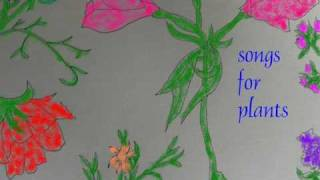 Songs For Plants - Original Song