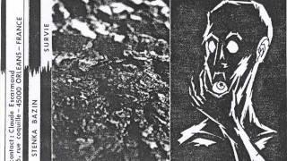 Stenka Bazin -Un Luxe Terrifiant De Gestes (1980